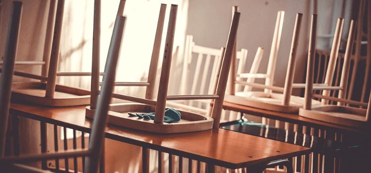 Derattizzazione nelle scuole normativa: scopri di più