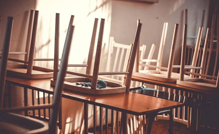 Derattizzazione nelle scuole normativa